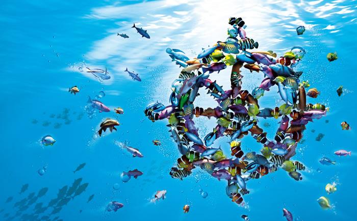 Denizbank-tan-KGK-Gecis-Donemi-Egitimi-Icin-Mali-Musavirlere-Ozel-Odeme-Kolayliklari-