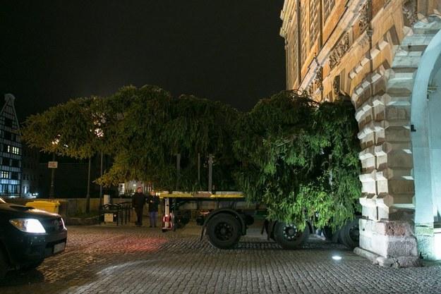 fot. Karol Stazczak / Gdansk